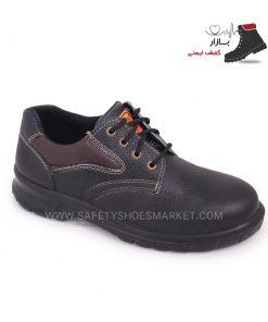 کفش ایران