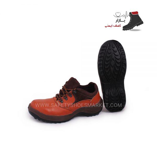 کفش آلپ تسكو